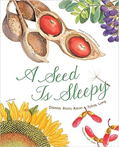 A Seed is Sleepy by Dianna Hutts Aston, illustrated by Sylvia Long cover