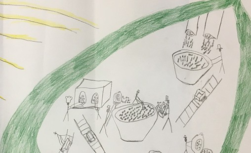 Photo of a student drawing showing the leaf factory and the production of chlorophyll.