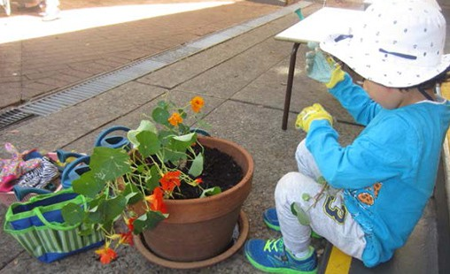 Photo of a student working with a pot plant, connecting with reality and nature.